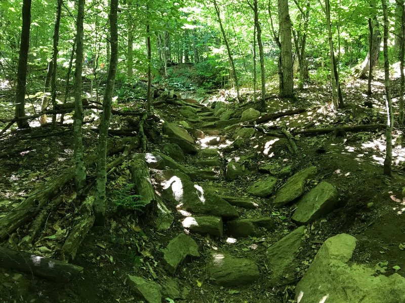 Rock steps on Mt Arab Trail