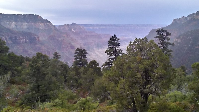 Looking towards the South Rim from the upper part of the Old Bright Angel Trail.