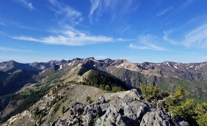 View looking west from top of Kessler