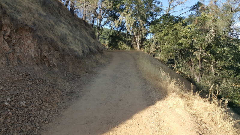 Looking up Oat Hill Mine Trail