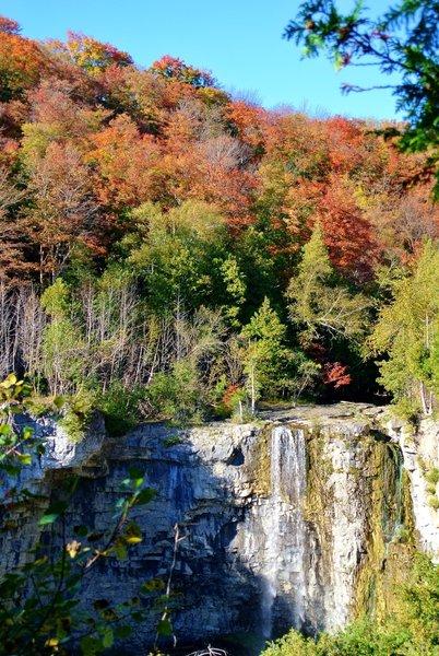 Eugenia Falls in the fall