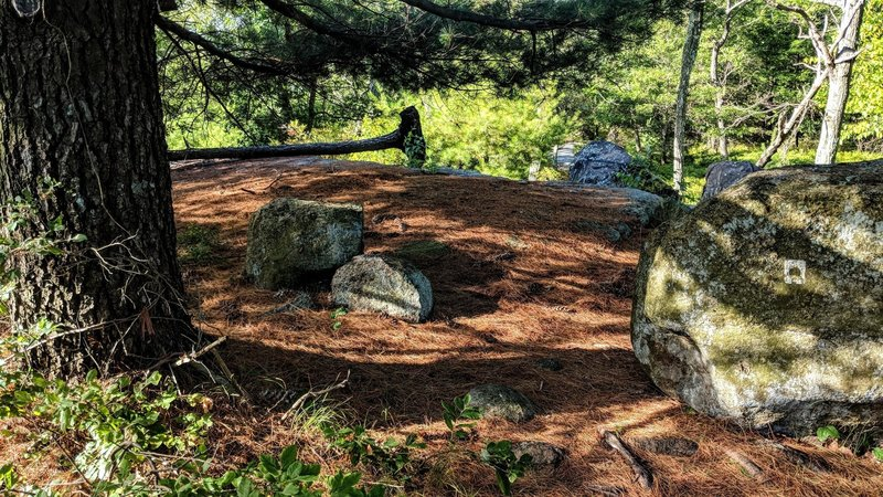 A great break spot on Racoon Brook Hills Trail in Harriman State Park