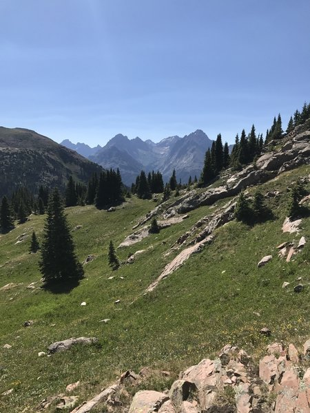 Needles from Twighlight peak meadow