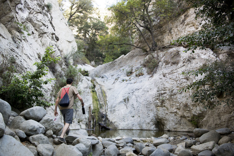 Switzer Falls in the summer