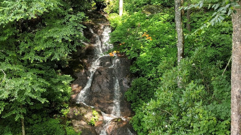 Woodfin Cascades