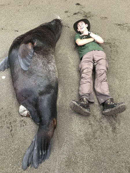 Me and a huge dead sea lion on the beach. It really gives you an appreciation of their size.