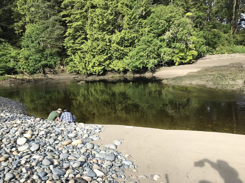 Reflections on the Ozette.