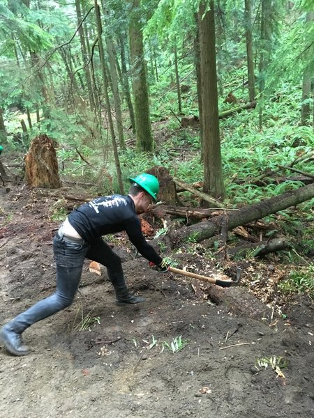 My brother cutting up a log on the trail.
