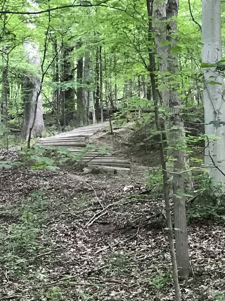 Stairs on Furnace Run Trail