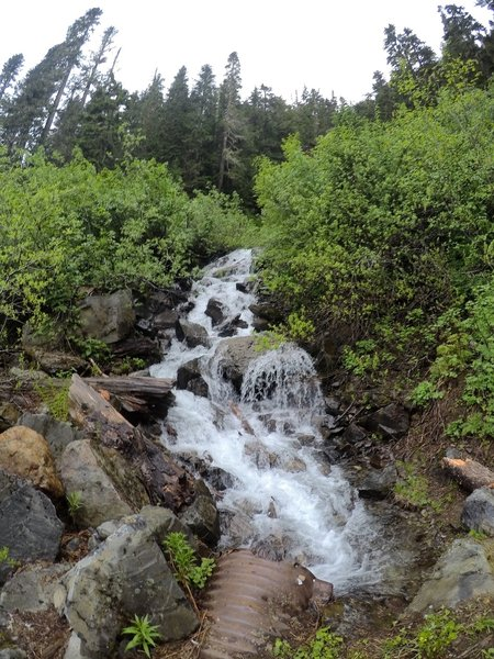 A waterfall just off NF RD 3065.