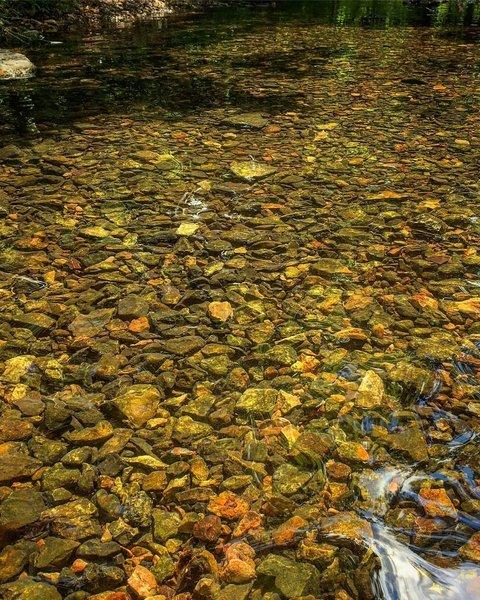 Tanyard Creek Water