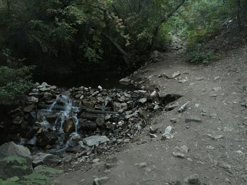 Enjoy the sound of the stream on the way into Deuel Creek canyon.