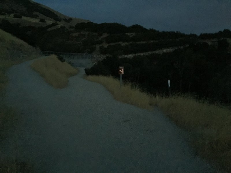 Going left takes you across the dam, right takes you on a fun trail with a bridge, and straight is a dead-end.