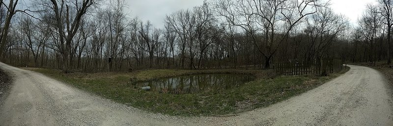The road does not actually bend, this is a panoramic shot of Walt's Pond.