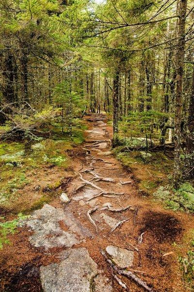 Walking between two summits