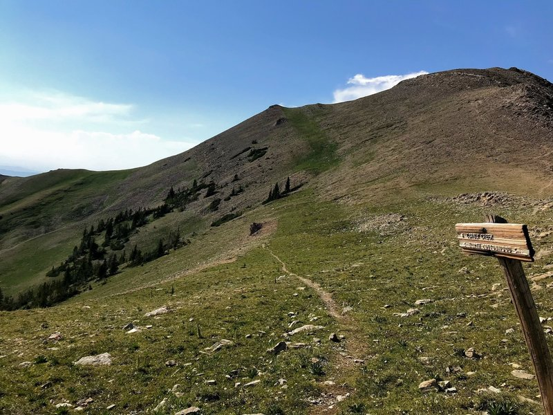 Start of the North Cottonwood and Corbly Gulch trails