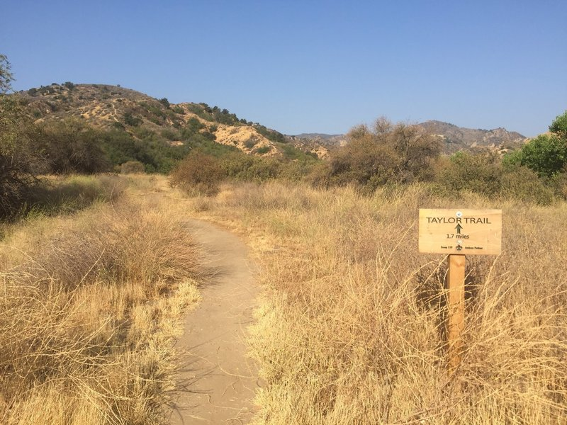 Trailhead of Taylor Trail from Ed Davis Park/Rivendale Ranch parking lot (north west side of the parking lot)