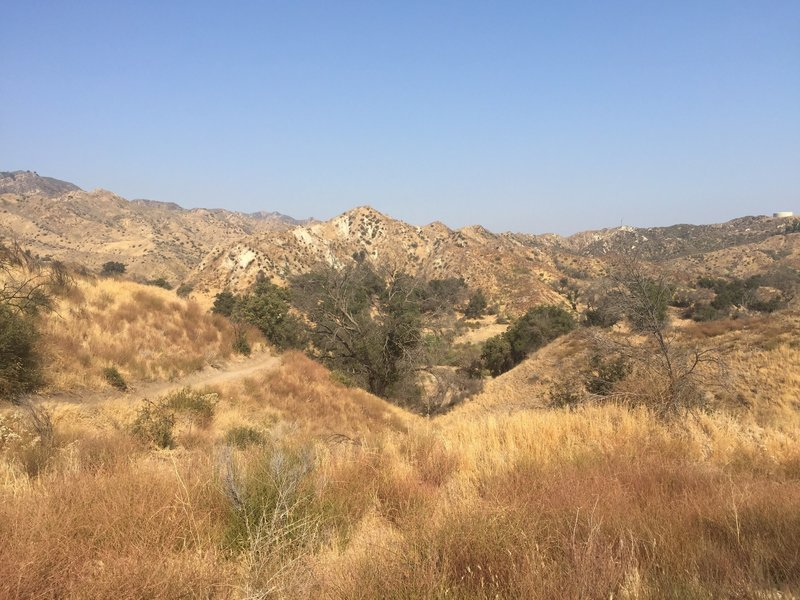 Views along the Taylor Trail