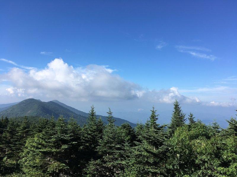 View towards Maple Bald