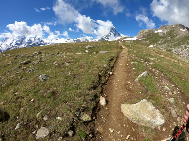 Amazing singletrack with a view!
