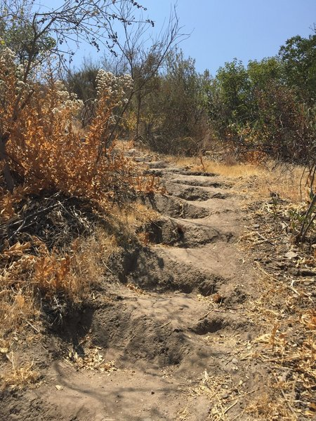 Pico Canyon Park trail - at the 0.5 mile marker, these are the dirt steps (about 340 steps) that lead you up the top of the hill with nice view and great cardio exercise