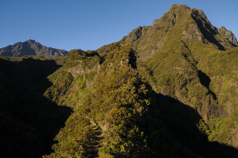 The Narrow ridge on Sentier Scout offers amazing views. Piton des Neiges is to the left.