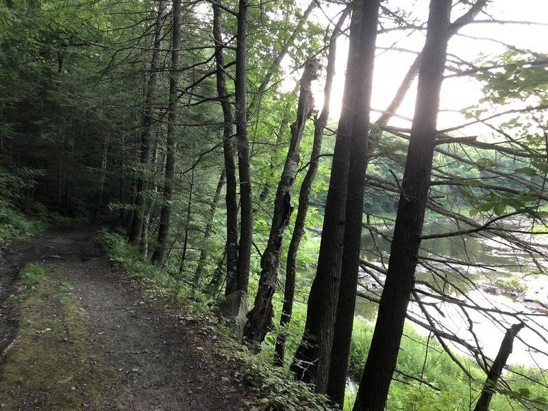 The trail along the river