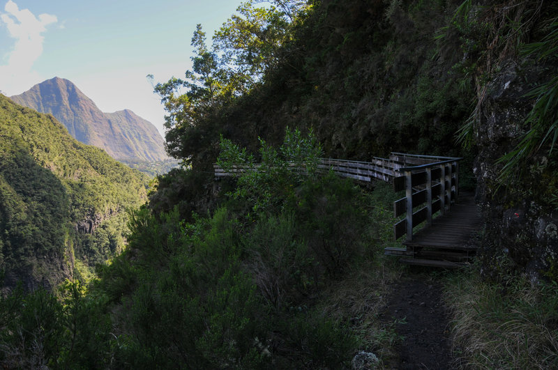 View north towards Piton Cabris and Ilet Aurere with a boardwalk section of trail with the steep plunge to Bras Bemale's ravine