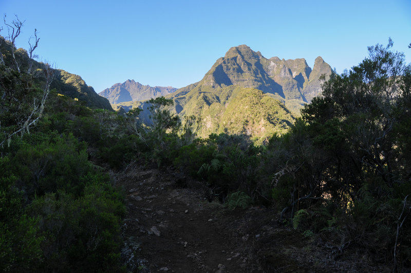 Clear view to Piton des Neiges along Sentier Scout