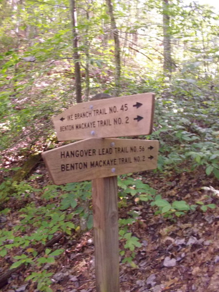 Hangover trailhead on Ike Branch