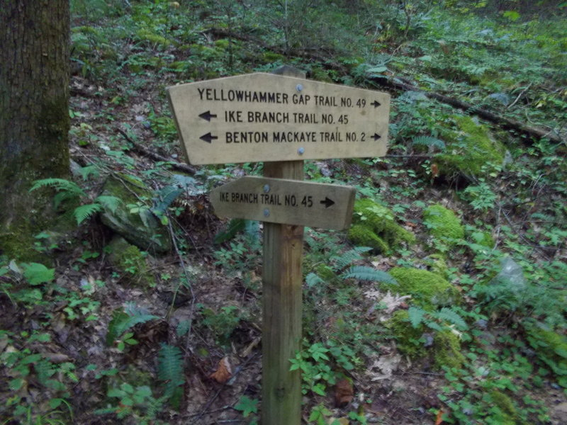 Yellowhammer Gap trailhead on Ike Branch