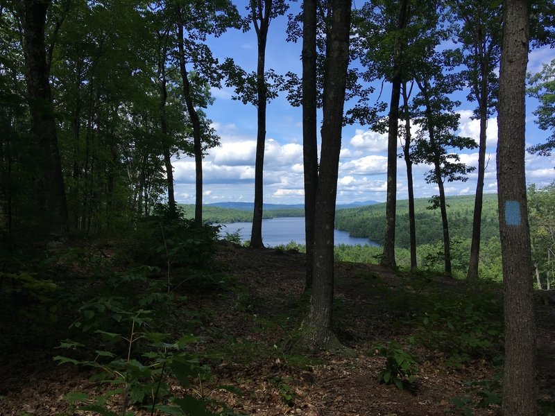 Viewpoint of the Penacook Lake from the Blue Loop trail.