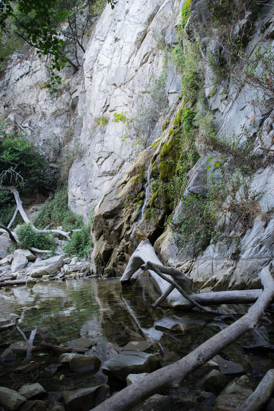 Sturtevant Falls with just a trickle of water