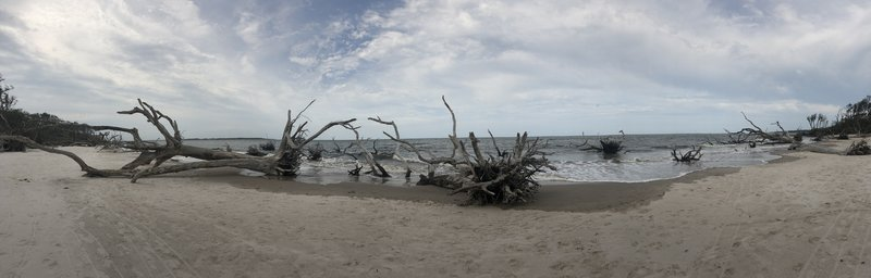 panorama view of the beach