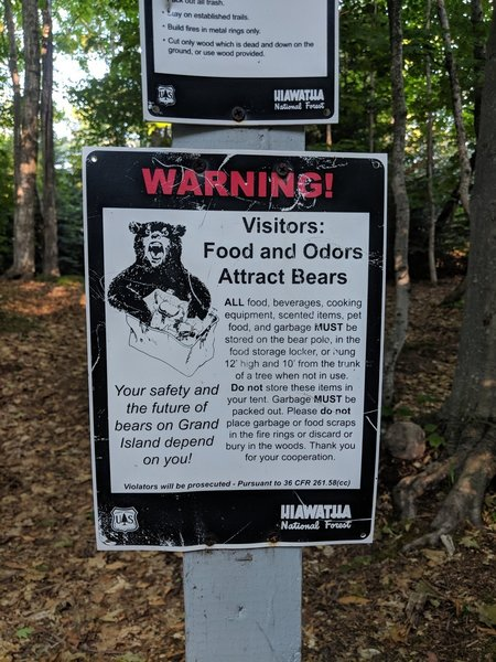 Great Advice About Bears @ Gull Point Campground