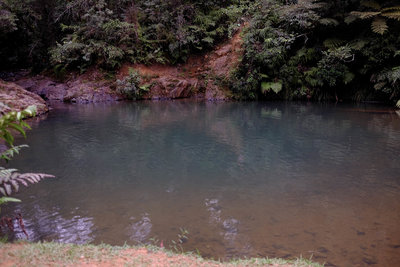 Hiking Trails Near Bosque Estatal De Carite