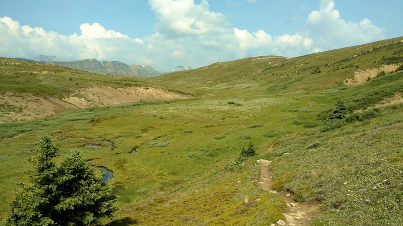 The headwaters of John-John Creek in the high meadows of the east end of Pobotkan Pass, looking west on Pobotkan Pass Trail.