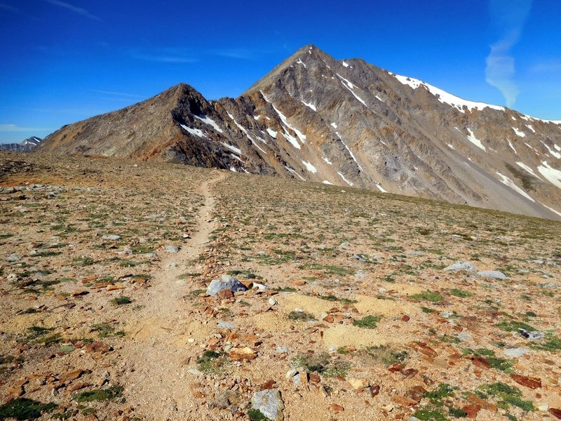 La Plata Peak trail looking at Sayers Peak
