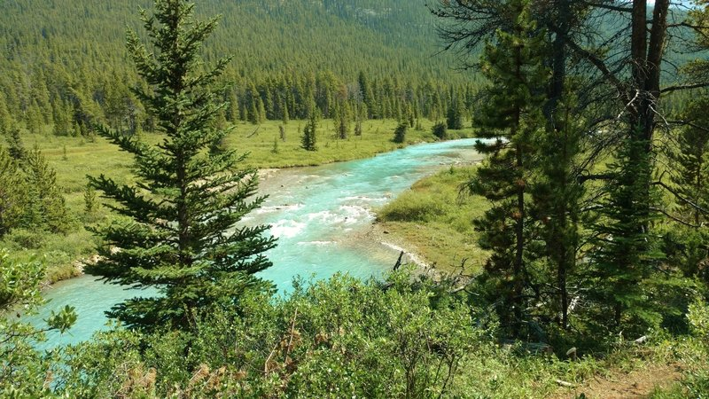 The beautiful turquoise Brazeau River, seen from the South Boundary Trail. The turquise color is from the glacial silt in the snow runoff  that feeds the Brazeau River.