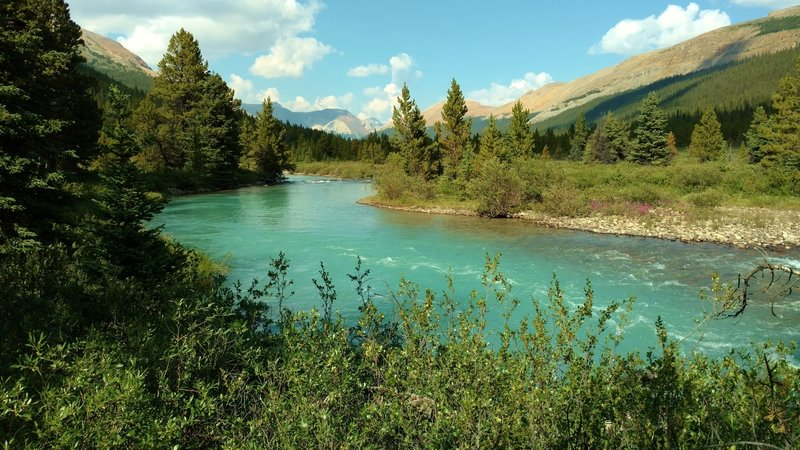 The gorgeous turquoise Brazeau River in the mountains of the backcountry of Jasper National Park, along the South Boundary Trail