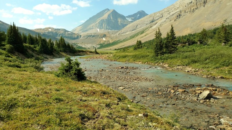 The Brazeau River in the meadows at the base of Nigel Pass, with Nigel Peak (and its subpeaks) in the distance, as seen looking upstream (south-southwest).