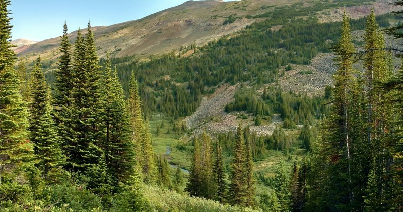 Four Point Creek deep in the valley below Jonas Pass Trail.