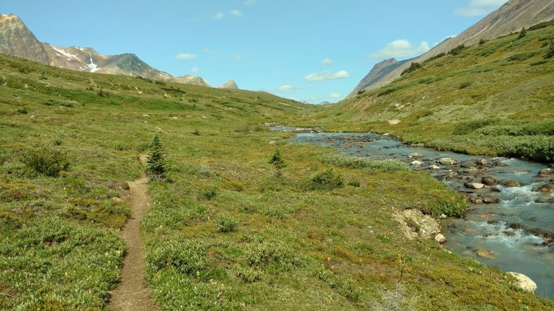 Four Point Creek runs downstream beside Jonas Pass Trail as the trail approaches Jonas Pass, and peaks on the other (north) side of the pass come into view.