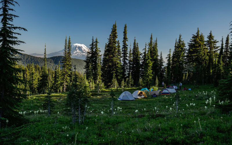 Camping with Mt. Adams in the background.