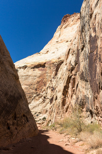 The towering walls of Capitol Gorge