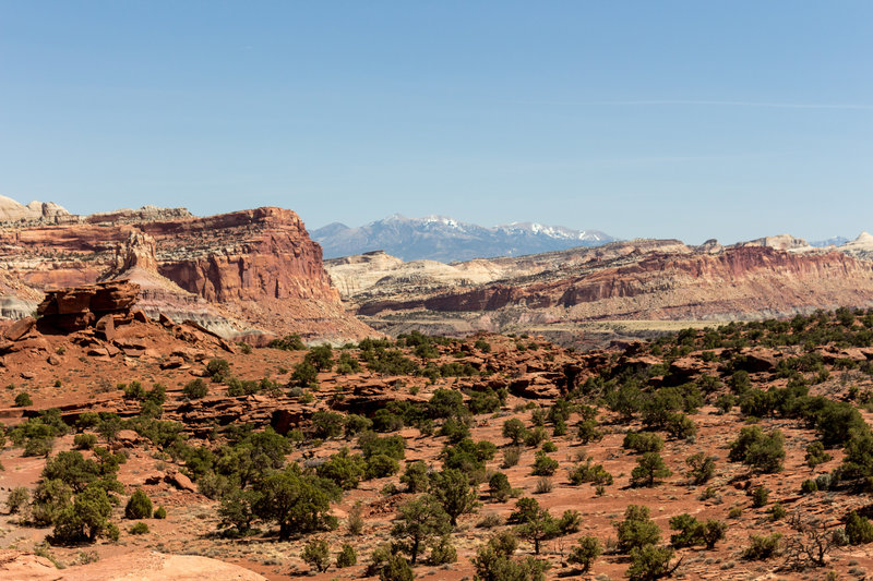 Henry Mountains and Navajo Nobs from Panorama Point.
