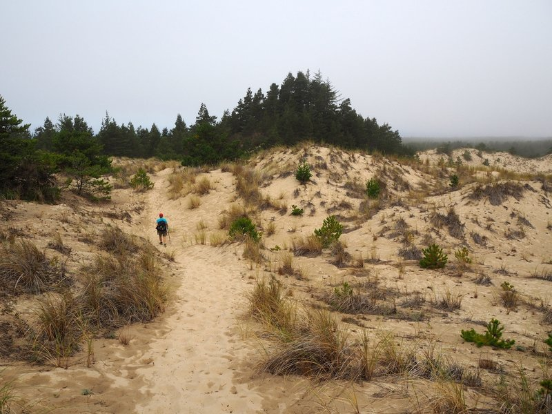 Crossing the dunes on the Threemile Lake Trail