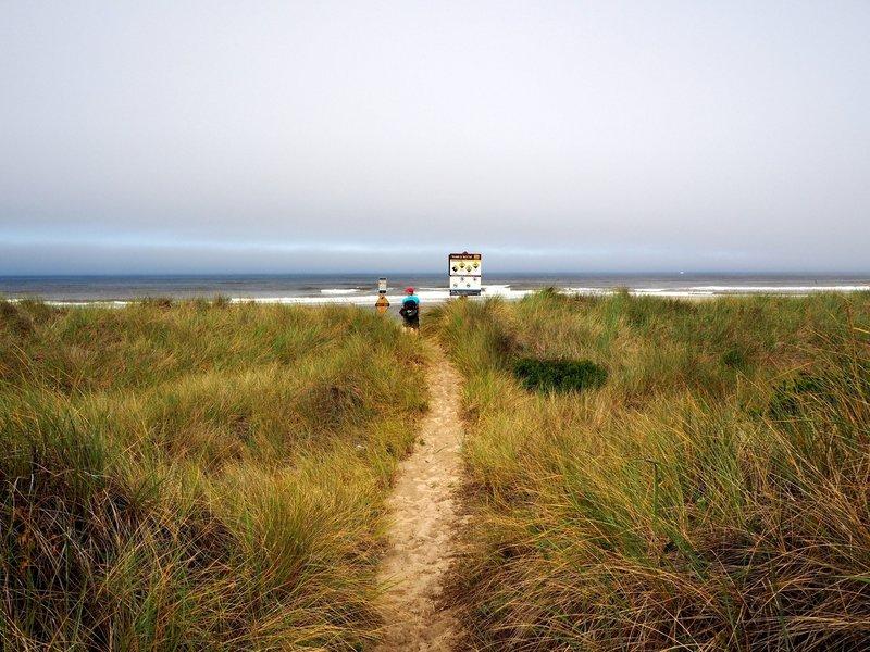 End of the trail on the Oregon coast.