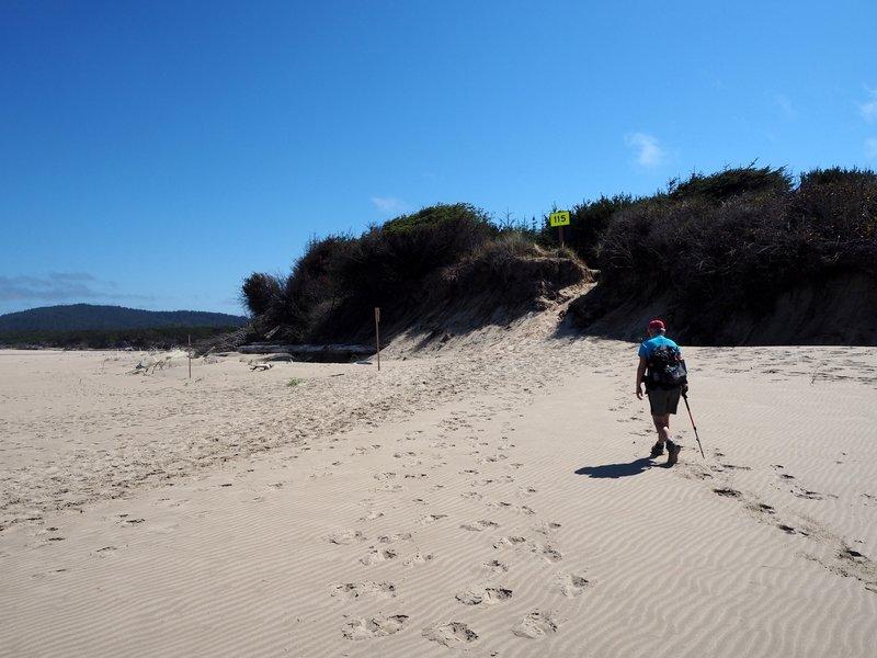 Where the Tahkenitch Dunes Trail reaches the beach.