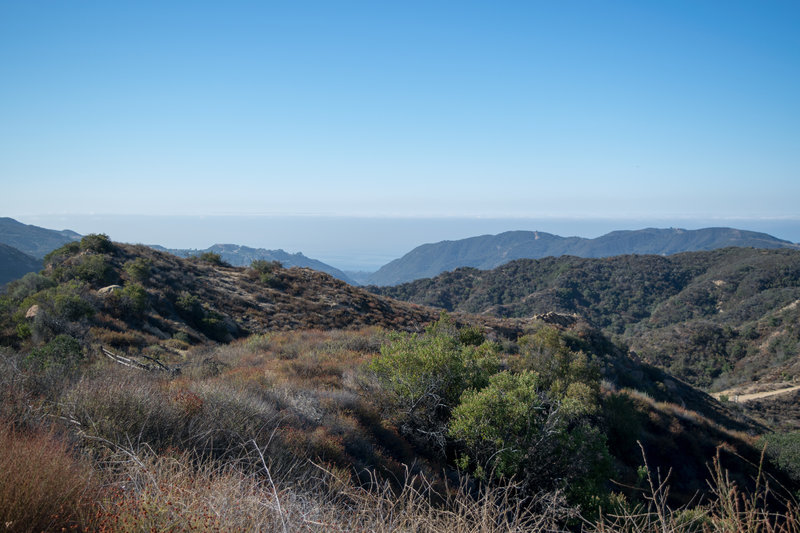View of the Pacific Ocean from near the top of Eagle Rock fire road.